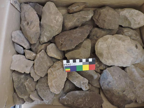 stone tools in a box