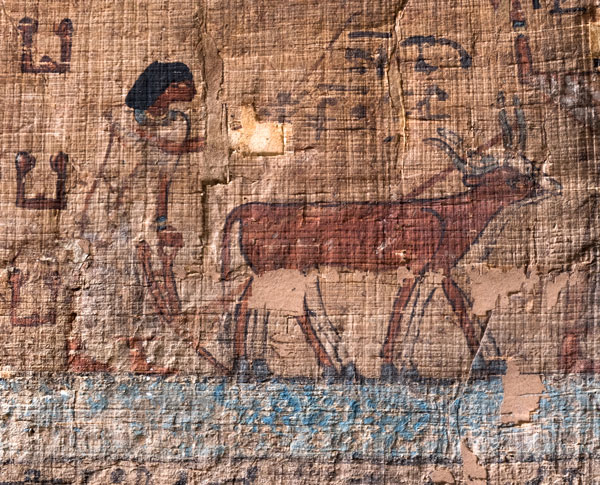 Egyptian illustration of figure and cattle