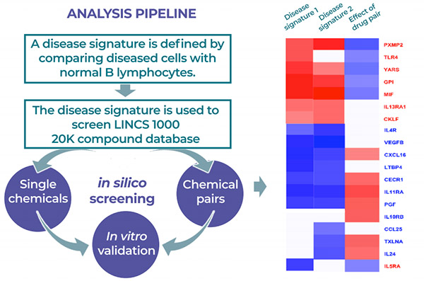 Heatmap showing the result of the in silico screening for a drug pair