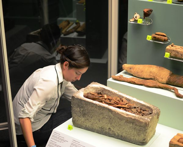 Curator installing mummies at the museum