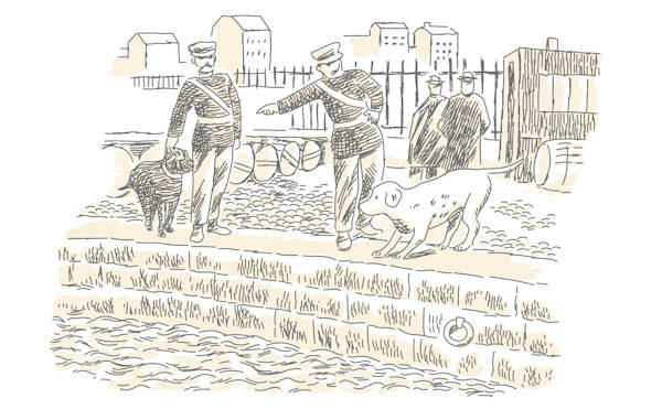Illustration of dogs at a river