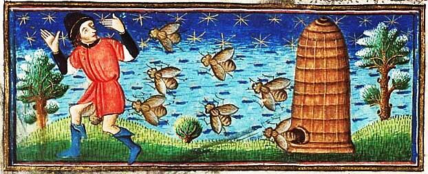 Medieval picture  - (Oversized) bees chasing man from their hive