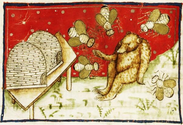 Medieval picture  - Wonderful Steiff-like Bear and giant honey bees