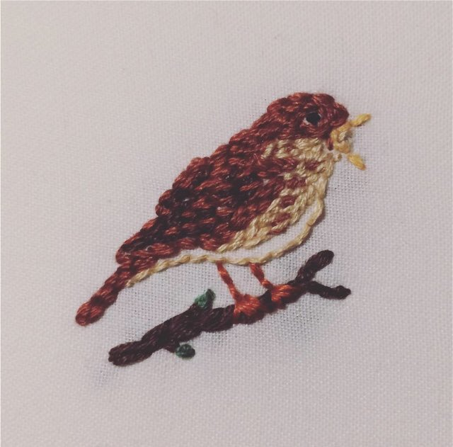 An embroidered nightingale