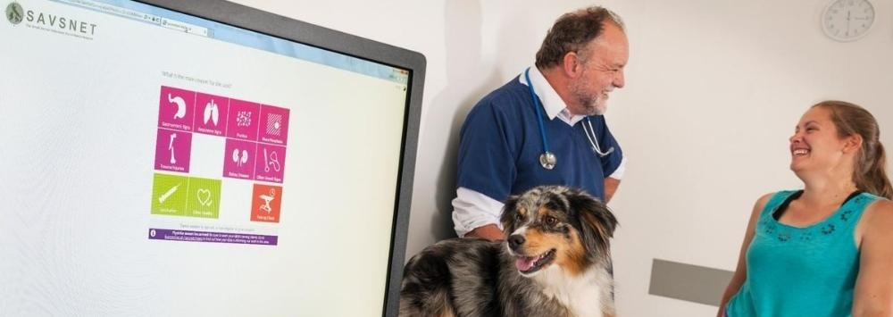 Male vet and female client with Collie dog looking at computer screen showing the SAVSNET window