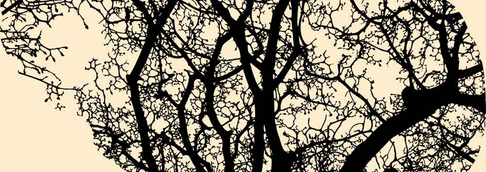 Philosophy research at the University of Liverpool