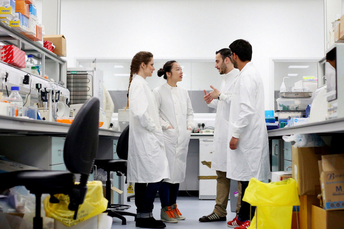 Students in lab discussing with each other
