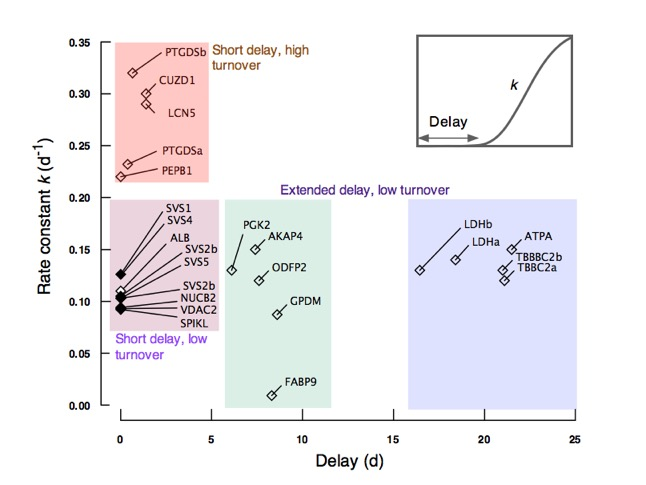 Dynamic sperm labelling | Papers | | Centre for Proteome