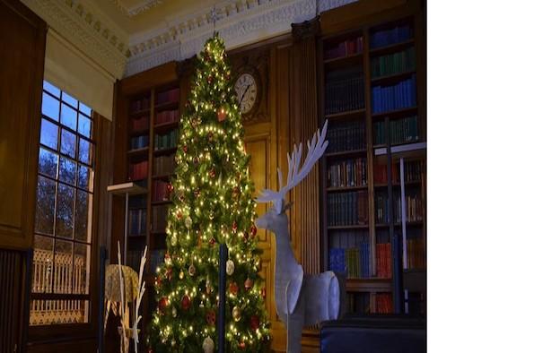 Sota Christmas tree
