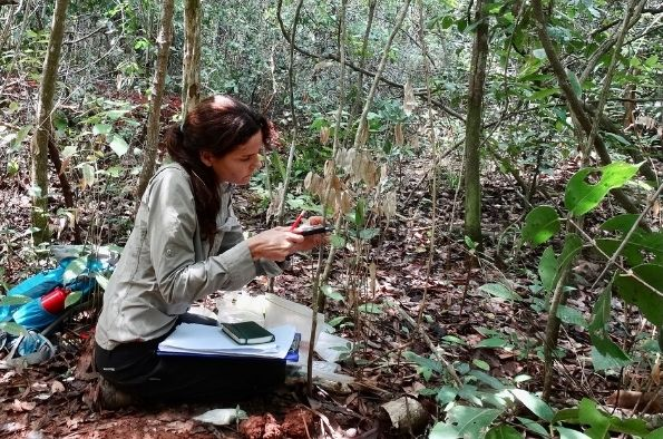 Image of Dr Alejandra Pasual-Garrido in woodland.